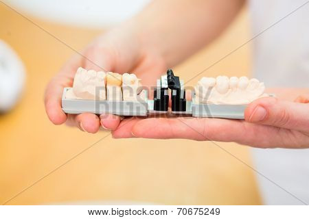 Dental technician checking denture