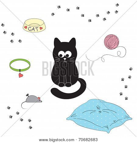 Cat's accessories