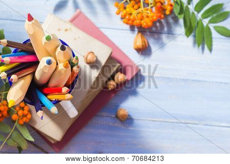 Pencils Books Concept Back School Autumn Fruit