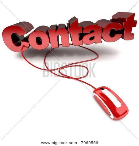 Contact Online