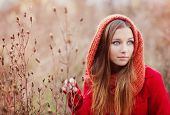 stock photo of cold-weather  - Portrait of beautiful girl with scarf in autumn nature - JPG