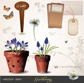 pic of flower pots  - build your own small garden with potted plants  - JPG