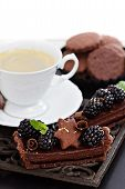 stock photo of tarts  - Delicious chocolate ganache tart with fresh blackberries  - JPG