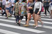 pic of zebra crossing  - busy city people crowd on zebra crossing street - JPG
