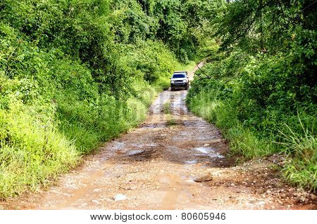 Vehicle Driving Off-Road on Remote Dirt Road in Dense Vegetation, Malawi, Africa