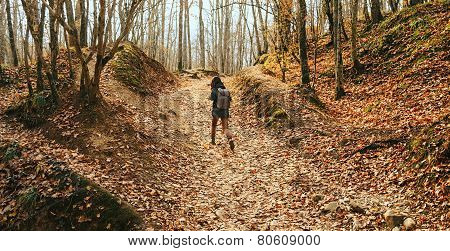 Traveler Woman Walking In Autumn Forest