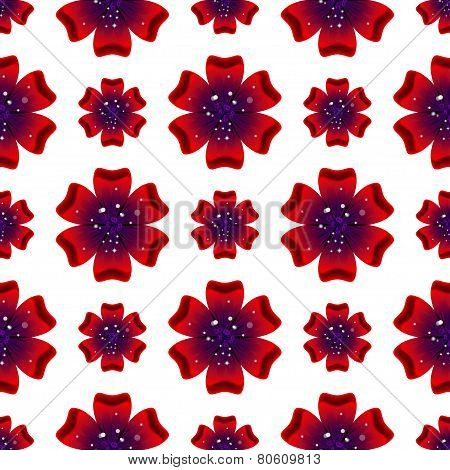 Beautiful Rad Flower. Seamless Floral Pattern. Vector