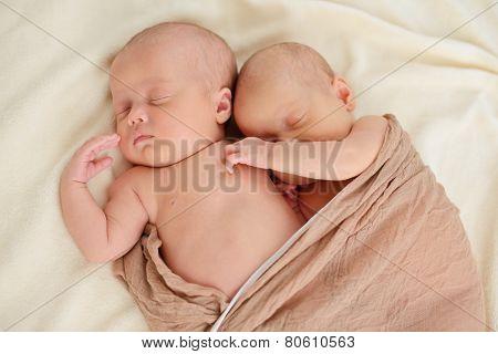 Lovely Sleeping  Twins