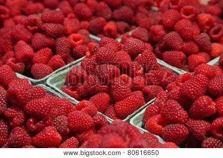 Market Fresh Raspberries