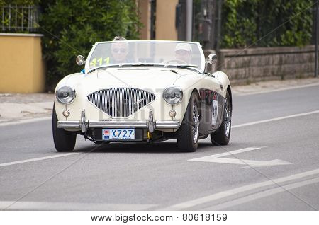 old car Austin Healey 100 M BN2 1956 mille miglia 2014