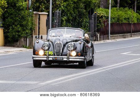 OLD CAR Jaguar XK 140 DHC 1956 MILEL MIGLIA 2014