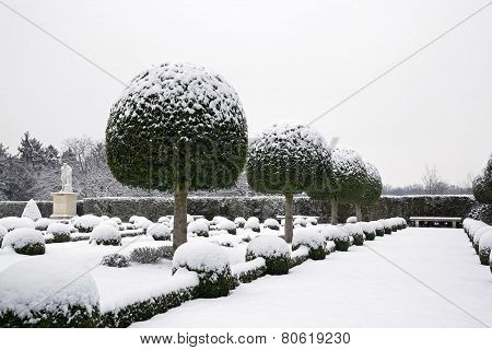 Garden of box tree and yews under the snow, antique statue (France)