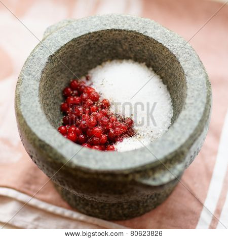 Salt and redberry in mortar, marinade ingredients, soft focus