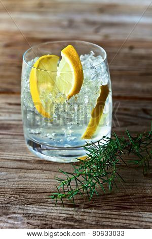 Gin With Lemon And Juniper Branch