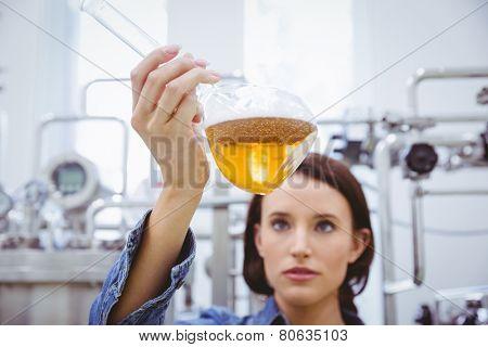 Stylish brunette in denim jacket looking at beaker of beer in the factory