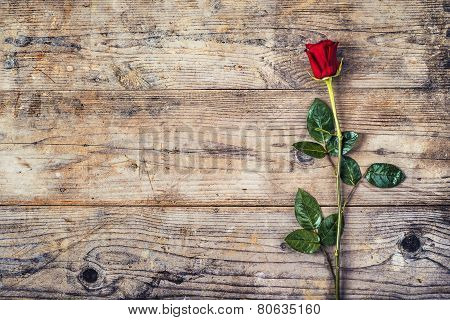 Red rose on a wooden floor