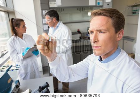 Scientist looking at test slide at the laboratory
