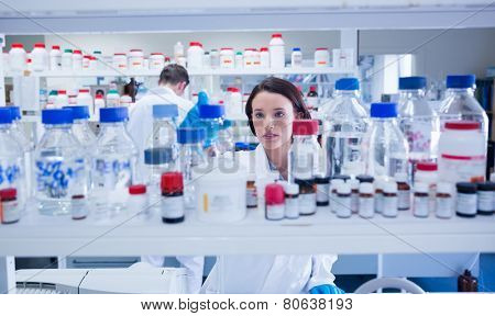 Young chemist picking up the bottles on the shelf in lab