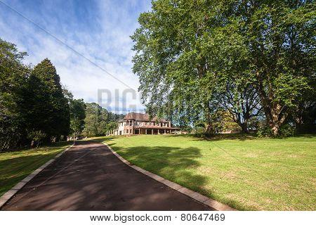 DriveWay Mansion