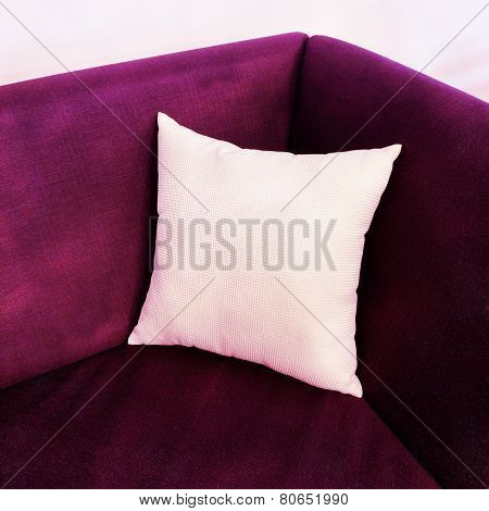 Fancy Purple Sofa With White Cushion