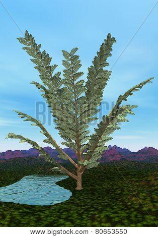 Pachypteris tree - 3D render