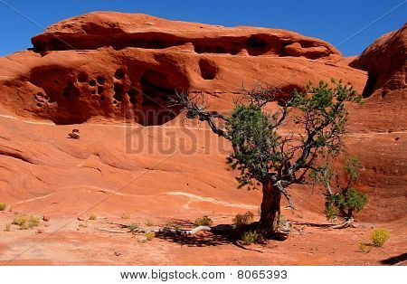 Red Rock Formation In Canyonlands Np