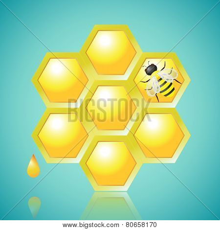 Honeycombs And Bee Vector Illustration