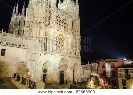 Gothic cathedral, night view