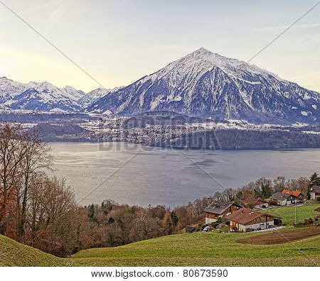 Swiss Rural Landscape Near Thun Lake At Sunrise
