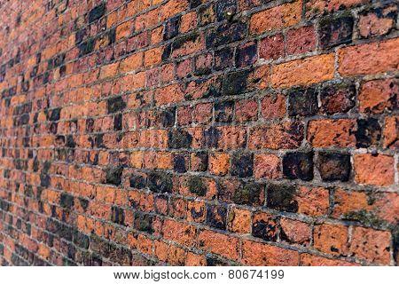 Old Brick Wall on Angle