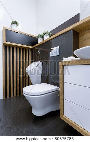 View Of Toilet