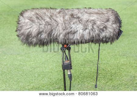 Close-up The Professional Sport Microphone Situated On The Green Grass.