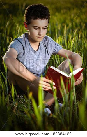 Teenage Boy Reading A Book At Sunset