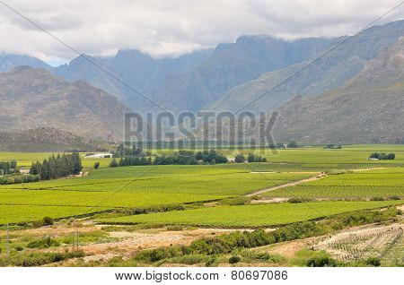 View Of Mountains In The Hex River Valley