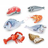 picture of shrimp  - Seafood products set with salmon steak shrimp prawns fish crab isolated vector illustration - JPG