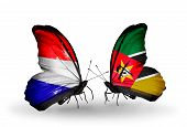 picture of holland flag  - Two butterflies with flags on wings as symbol of relations Holland and Mozambique - JPG