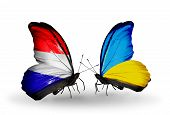 picture of holland flag  - Two butterflies with flags on wings as symbol of relations Holland and Ukraine - JPG
