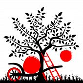 picture of hand-barrow  - vector apple tree with one big apple - JPG