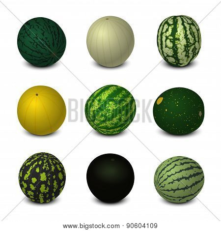 Different Varieties Of Watermelons