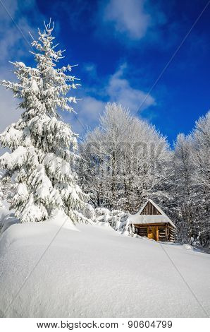 Mountain hut in winter landscape woods