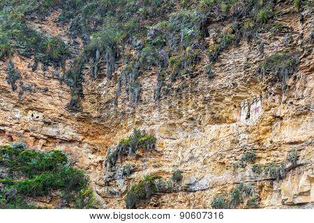 Cliff And Sarcophagi Near Chachapoyas, Peru