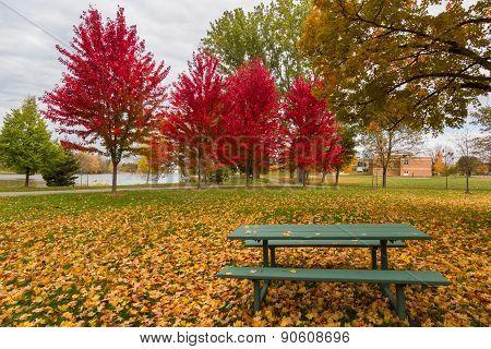 Ottawa In Autumn, Canada