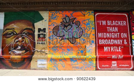 Mural art at JMZ Walls in Brooklyn