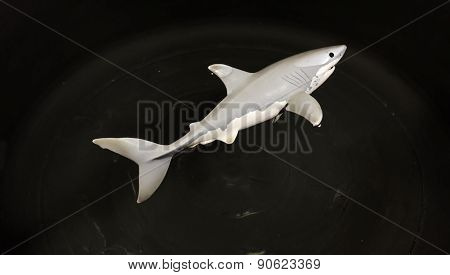 Great White Shark Toy In Water