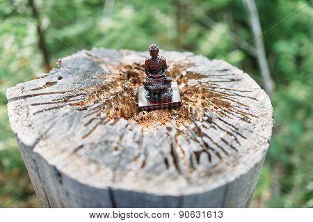 Buddha Baikal