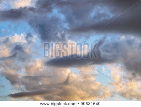Clouds Planes Shark