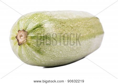Vegetable Marrow Closeup