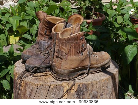 Ventilating hiking boots on a trunk
