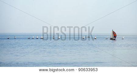 Sailboat group regatta race on sea
