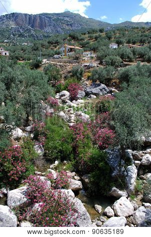 Mountain Stream, Andalusia.